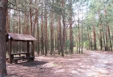 http://www.turystyka.lgdlubartow.org.pl/images/gmina_ostrowek/2012/sport/4.jpg